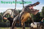 record alligator Image