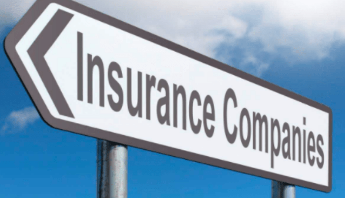 List of Insurance Companies in Africa, their Websites and Mode of Operations